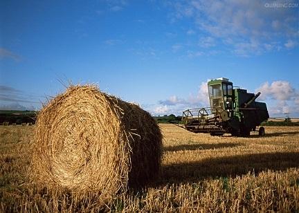 全力推进农业供给侧结构性改革