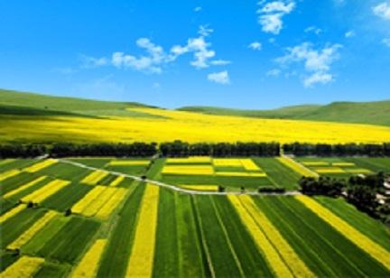 今年以来农业对外合作蓬勃发展