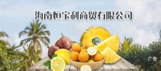 海南恒宝利商贸有限公司